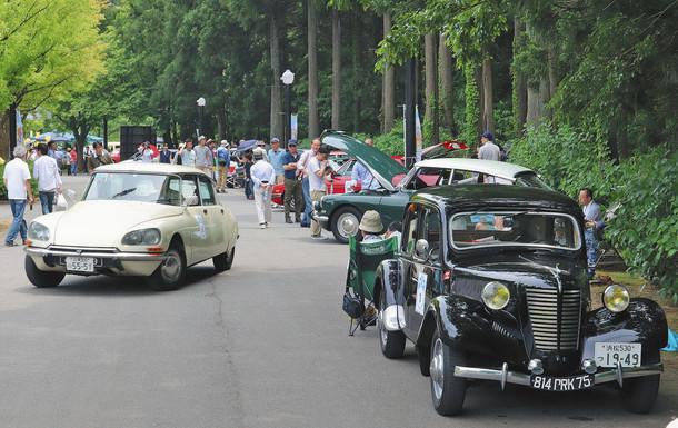 国内外の名車や旧車が集結したフレンチ・トースト・ピクニック=あわら市の金津創作の森で