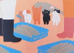 猫と一緒に高浜を冒険 絵本で育む郷土愛