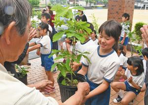 炭の材料となるミズナラやコナラなどの苗木を預かる児童たち=勝山市荒土小学校で