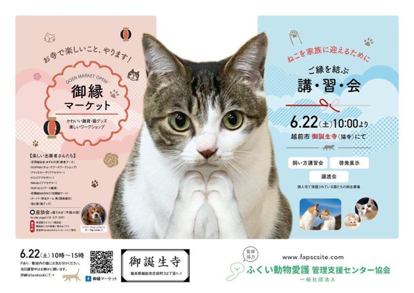 御縁マーケット+譲渡会 in 御誕生寺