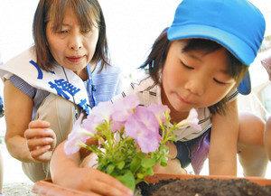 命の大切さ 花で学ぼう 人権擁護協議会あわら市部会 金津こども園に苗贈る