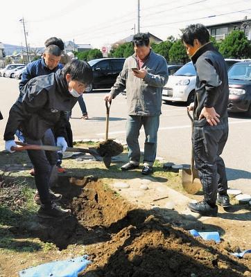 小学校の敷地内でタイムカプセルを捜す卒業生たち=福井市明新小学校で