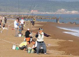 【地域】全国のキス釣り腕競う あわら 東・西日本の代表参加