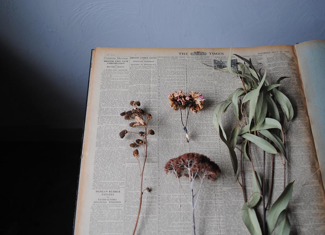 【7/26~】花・植物好き必見『ドライフラワー市』