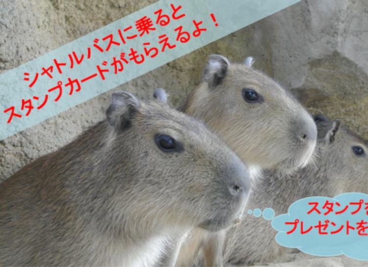 乗ると「イイことあるよ♪」足羽山公園遊園地に行くなら無料で使えるシャトルバス。