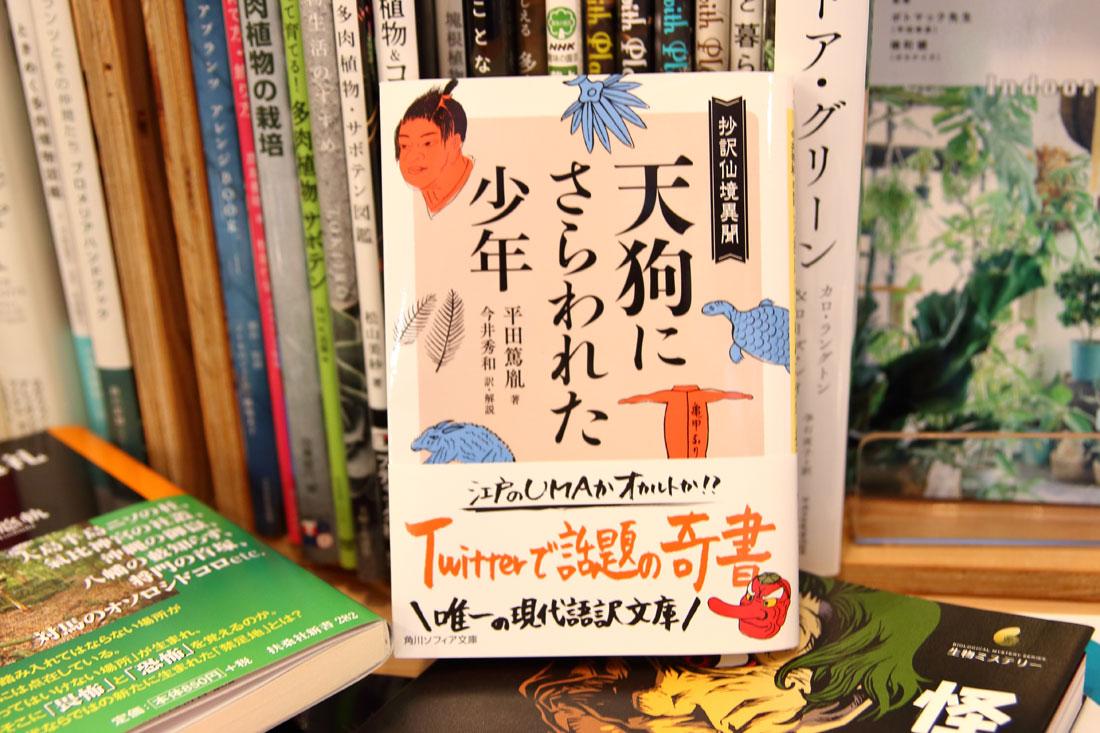 「天狗にさらわれた少年」平田篤胤 著 今井秀和 訳・解説