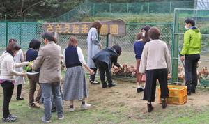 ニワトリの餌やりで交流を深める参加者たち=敦賀市の「ささえたまご農園」で