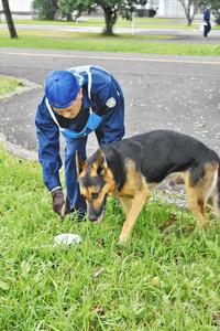 においで遺留品を捜す警察犬の候補犬=坂井市の県運転者教育センターで