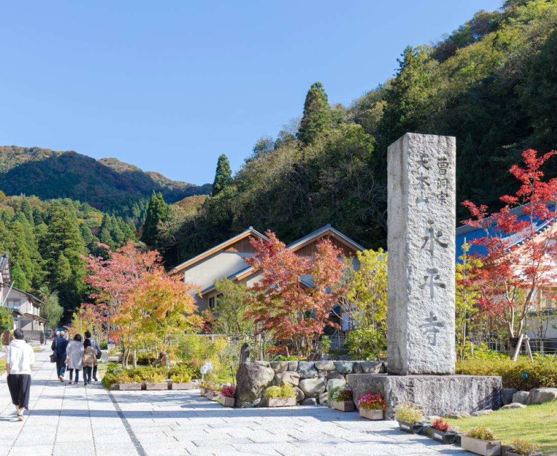 生まれ変わった永平寺参道。秋は紅葉もキレイな風情を感じる道に