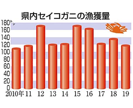 セイコガニ水揚げ、14%減の116・5トン 県まとめ