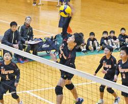 国高スポ少(越前市)優勝 日刊県民福井杯小学生男子バレー