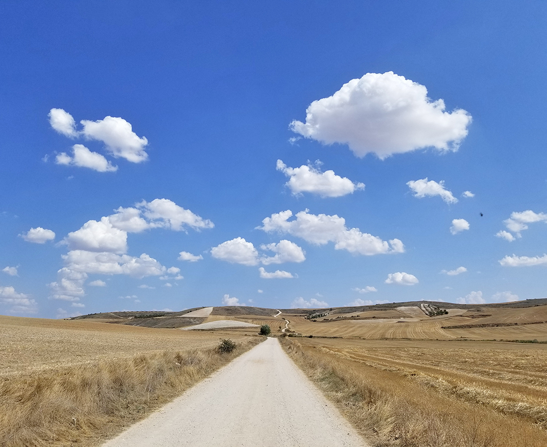 [世界から発信inスペイン] ~番外編~ 世界三大巡礼路で780キロ踏破!|サンティアゴ巡礼路