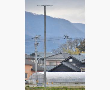 春江にコウノトリ巣塔 新たに設置 市長「今年も飛来を」