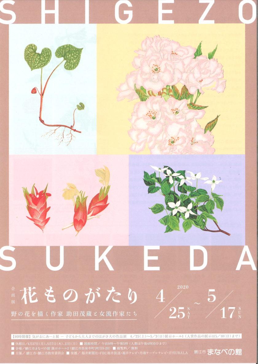 企画展 花ものがたり 野の花を描く作家助田茂蔵と女流作家たち