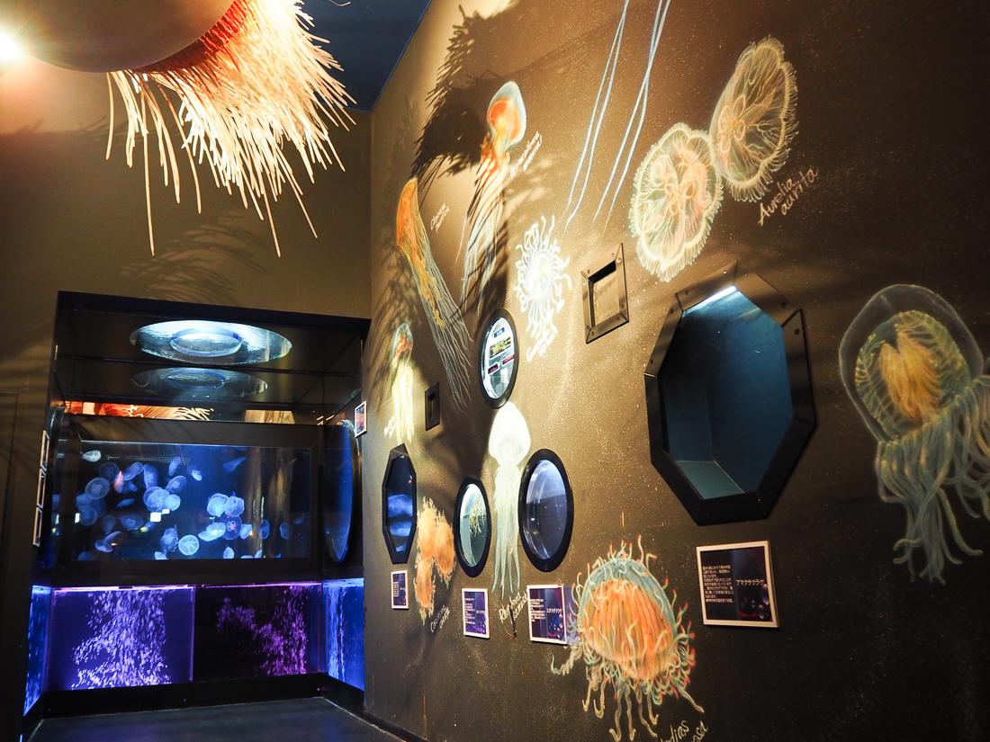 越前松島水族館 クラゲコーナー
