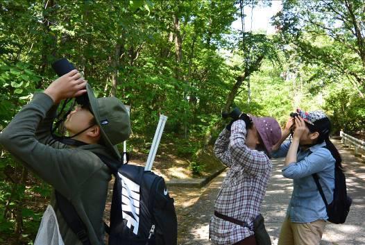 自然史講座「バードウィーク探鳥会at足羽山」