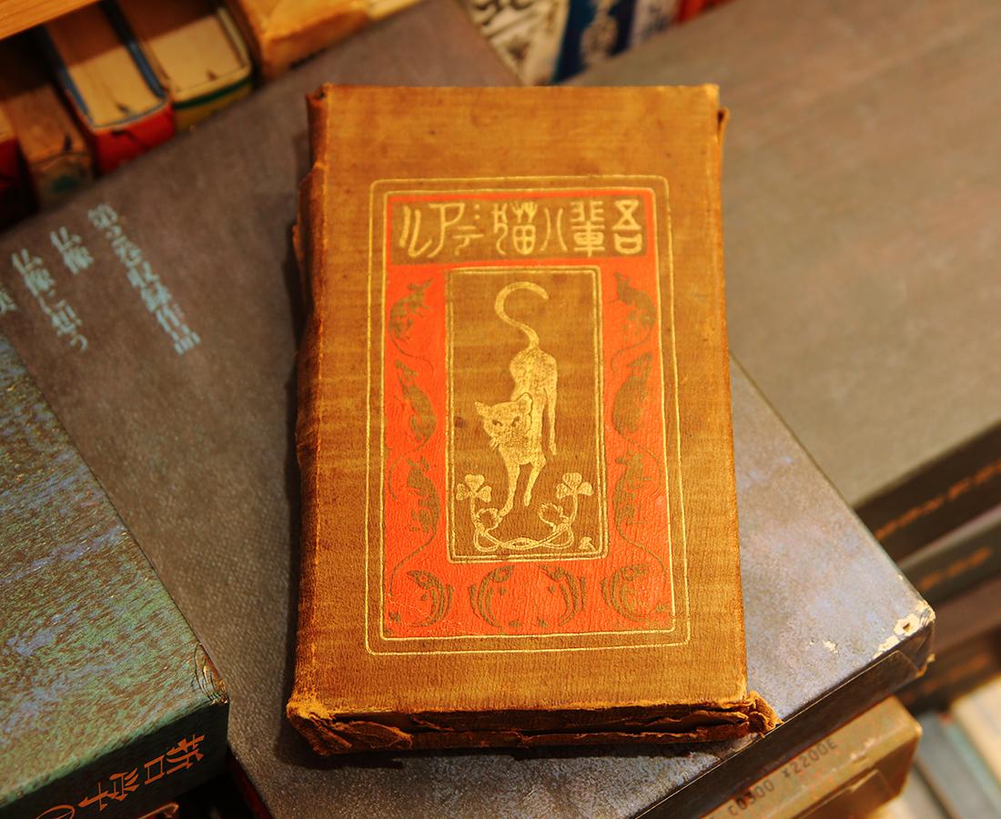 これがあの有名な本⁈ 希少な初版本・江戸時代の辞書まで眠る古本屋|メアリ書房