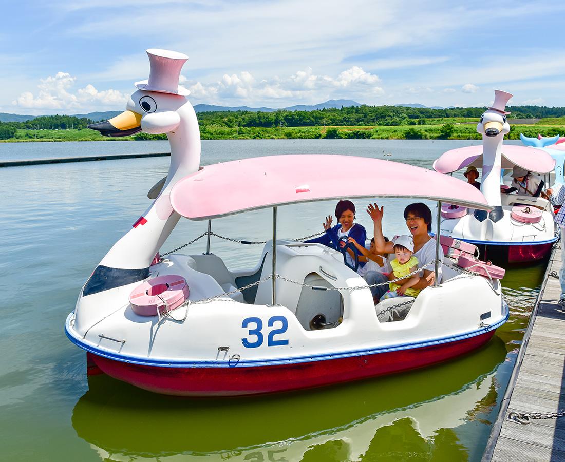 春が楽しみ♪ ボートや自転車でのぽかぽかデート│北潟湖畔公園