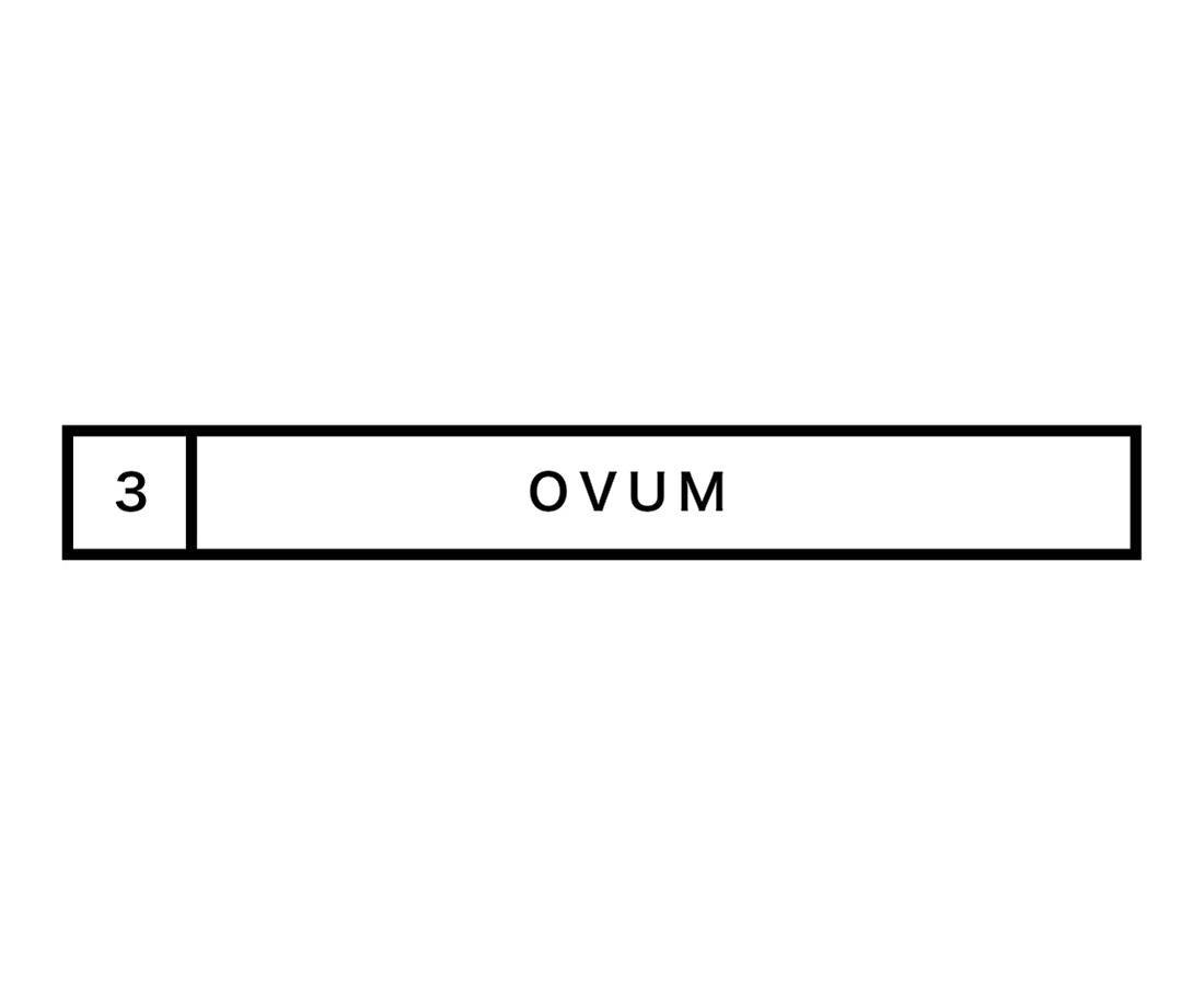 【OVUM】