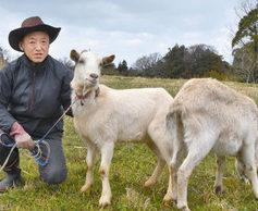 牧場作って集落元気に 福井・西畑町の藤井さん計画