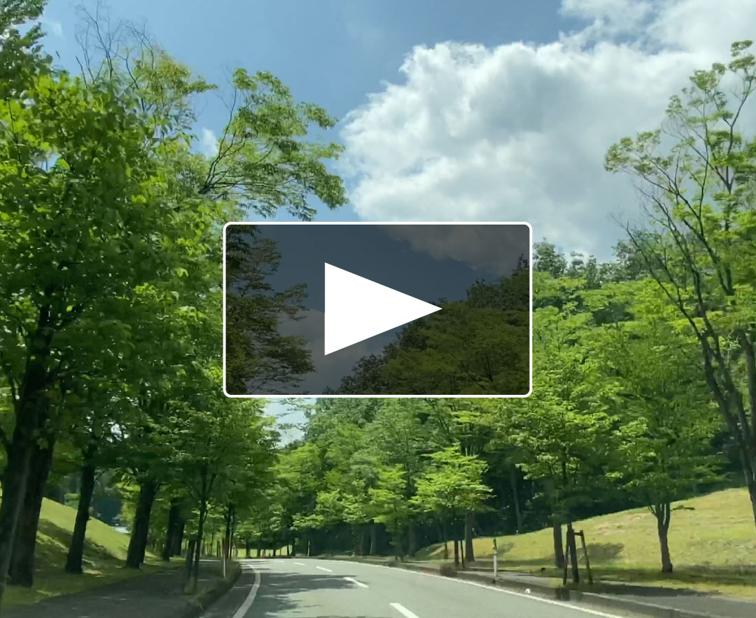コロナに負けるな!『おうちで○○気分』動画 ~新緑ドライブ編~