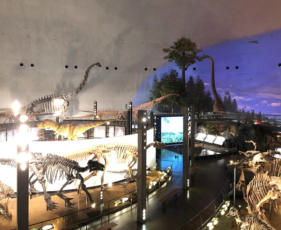 世界三大恐竜博物館『福井県立恐竜博物館』へようこそ!
