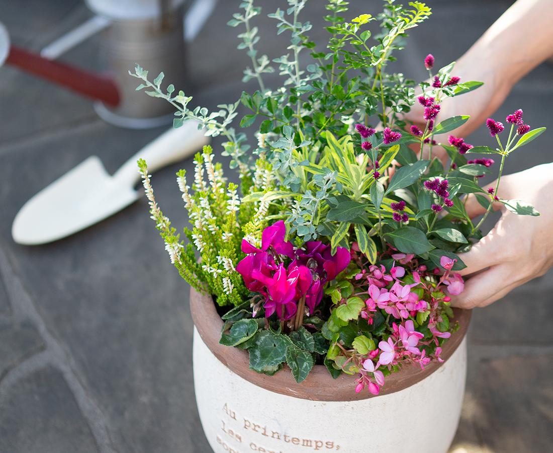 花とふれあう楽しい方法を動画でおしえてくれる開花園YouTubeチャンネル