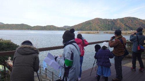 バードウォッチング 冬 ビギナーのための探鳥会in三方湖