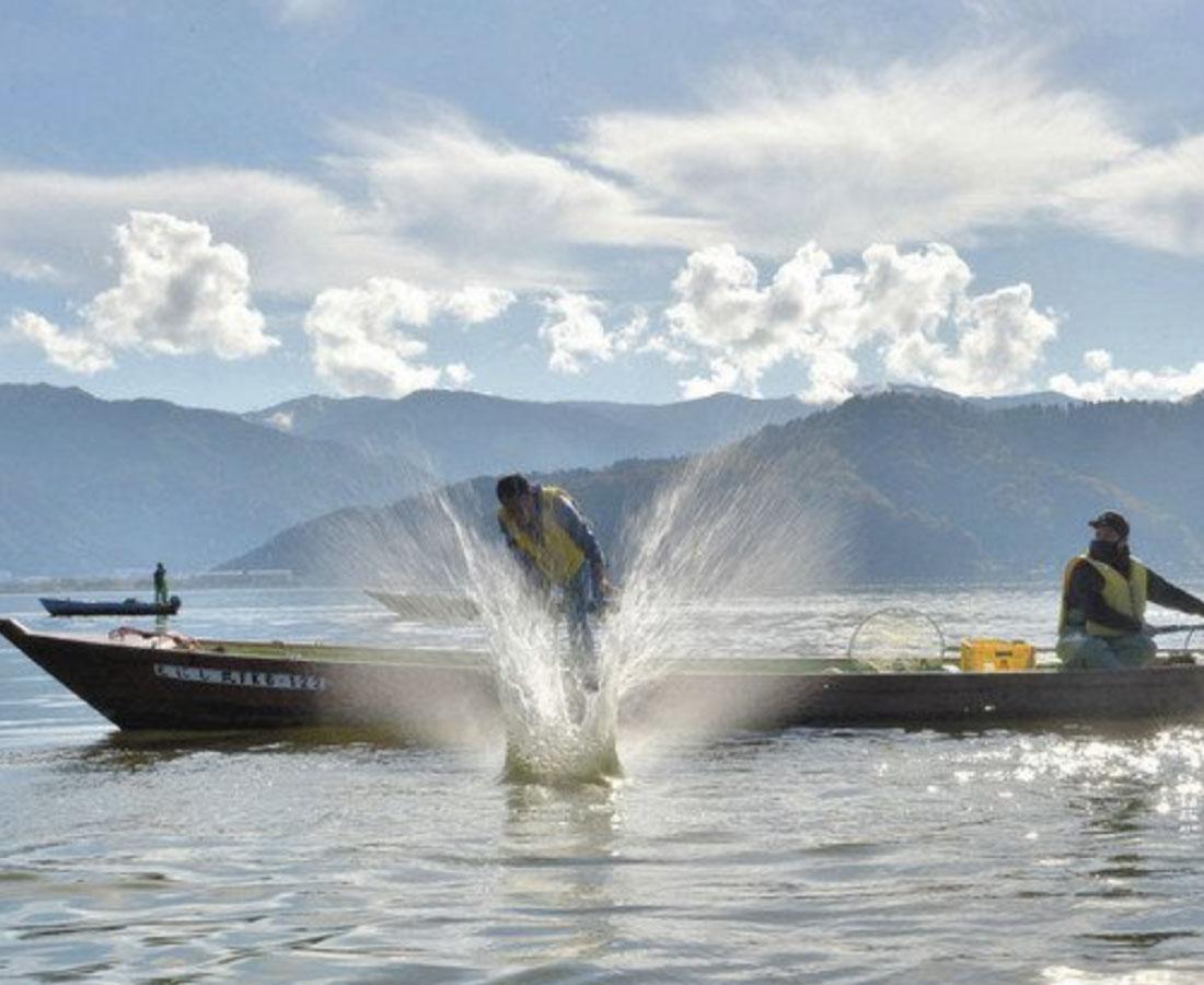三方湖に伝統の快音 たたき網漁