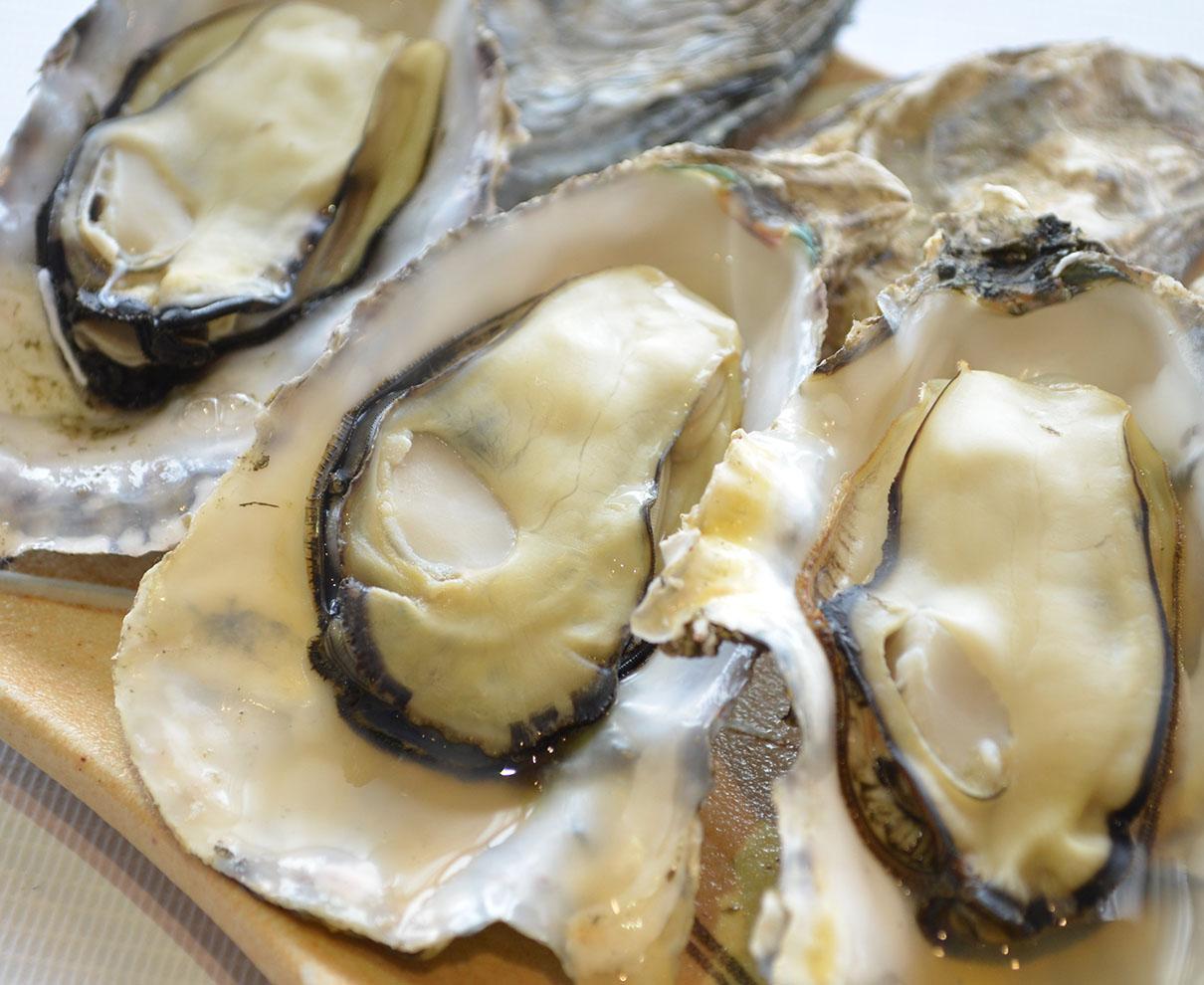 【1/16~】今年もこの季節がやってきた!「若狭牡蠣」が味わえる 牡蠣小屋が期間限定オープン!