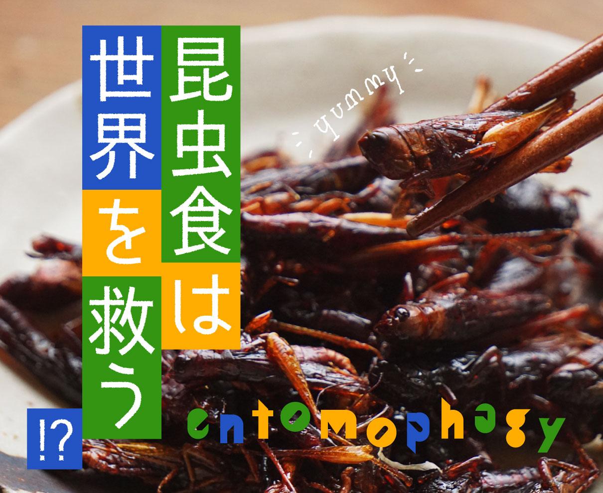 本気で食べたい人以外見ないで!キモうまグルメ「昆虫食」は世界を救う⁉