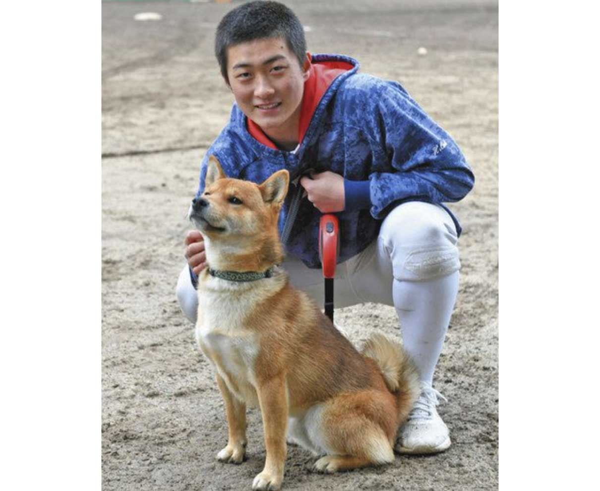 選手の活躍支える犬と猫 敦賀気比高に心強い味方