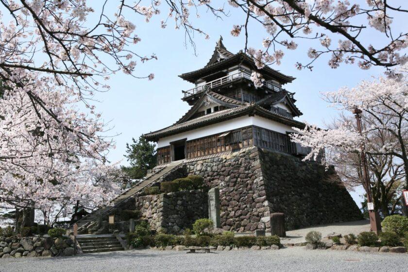 2021丸岡城桜まつり ~100選桜と最古の城がおもてなし~
