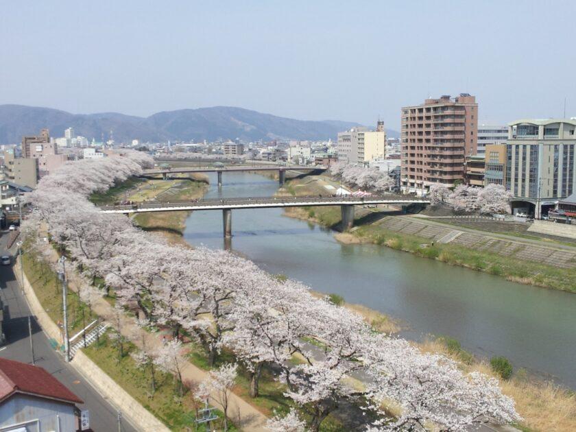 第36回ふくい桜まつり