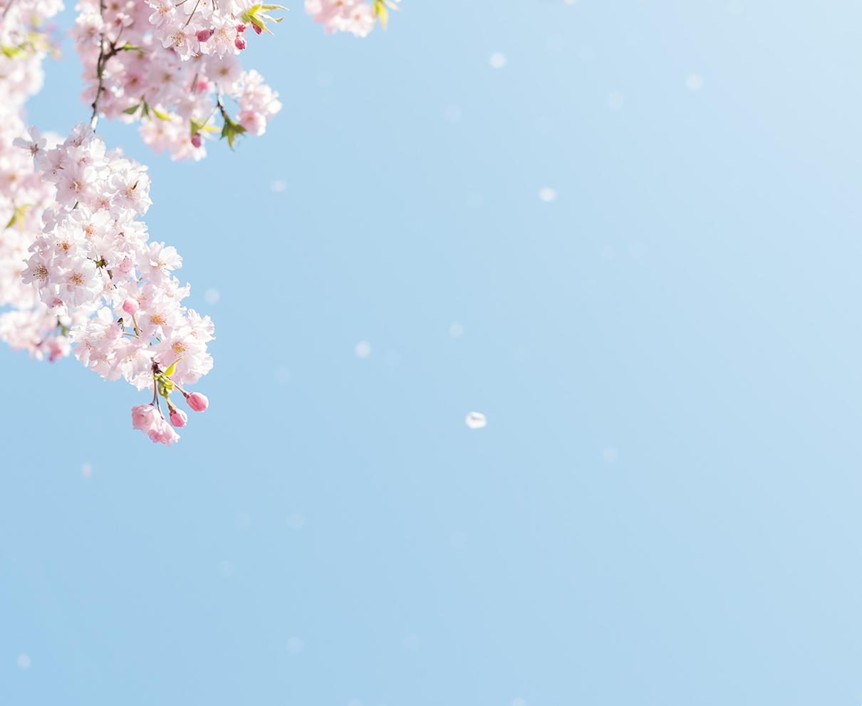 4月です。 いつもと変わらない生活でも、何かを始めてみようか…と気持ちが前向きになる季節です。