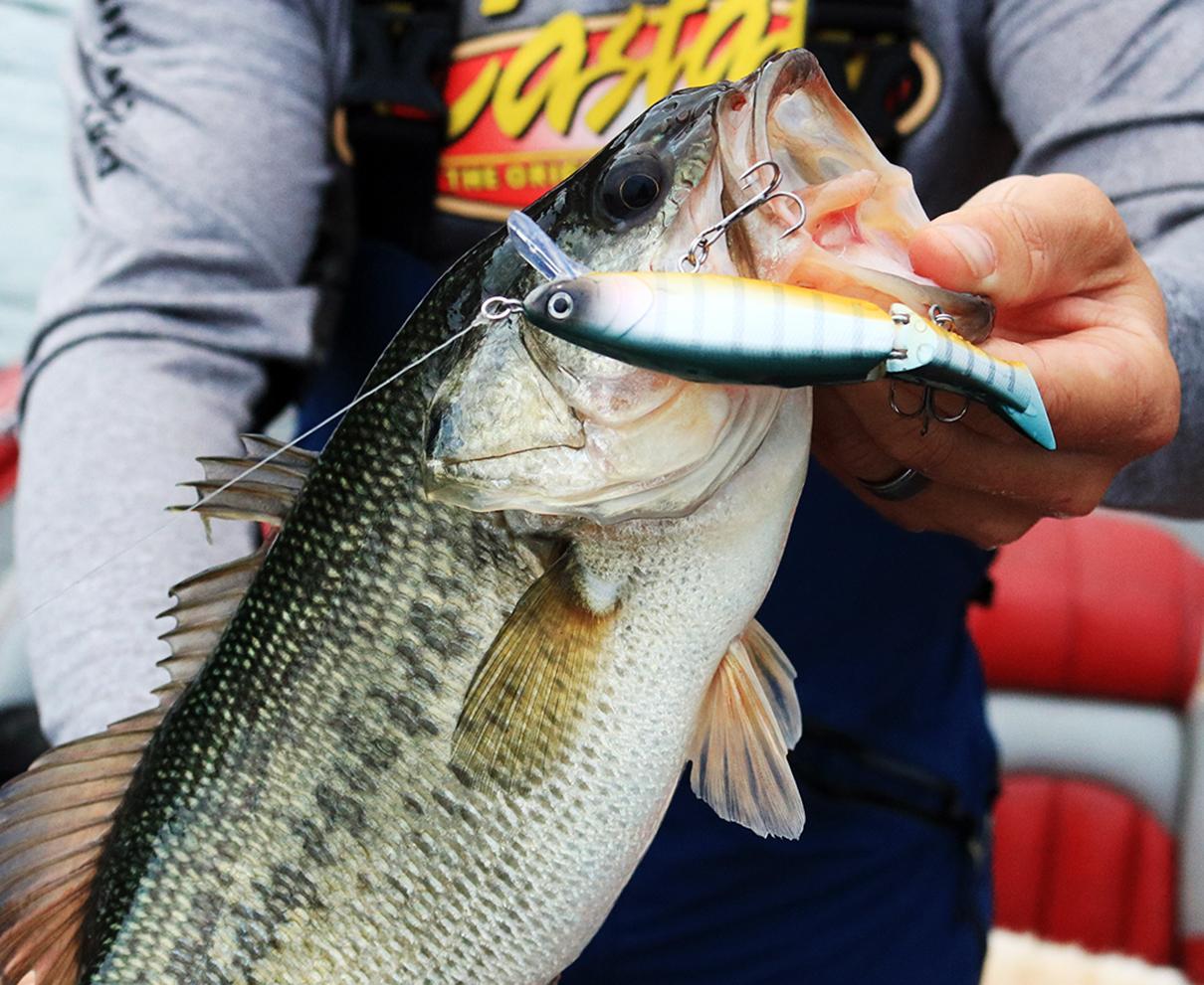 リールカスタムは釣りを制す⁉隣と被らないオリジナルタックル造りがいまキテます!