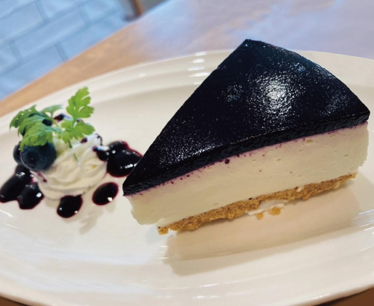 新登場! 湯田ヨーグルトのレアチーズケーキ|Veg.terrace(ベジテラス)