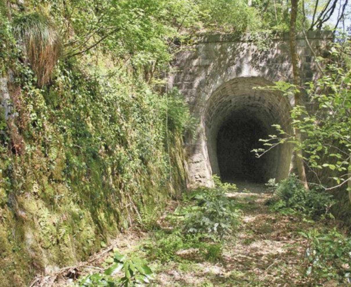 電鉄トンネル 遺産化を 勝山−大野 100年前の足跡
