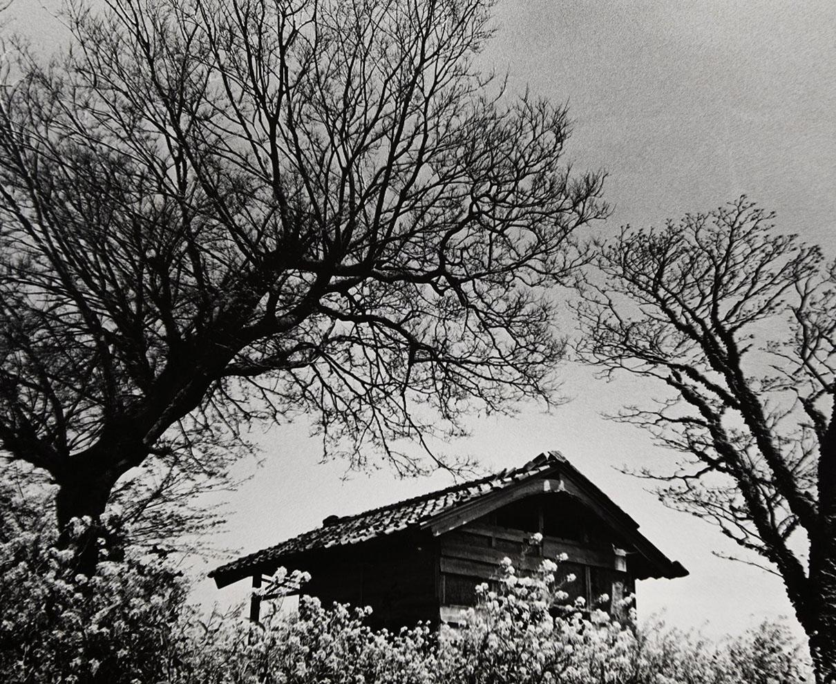 【~5/30】福井を撮り続けた写真家・水谷内健次さんの歩みをたどる展覧会開催中。|福井県立美術館