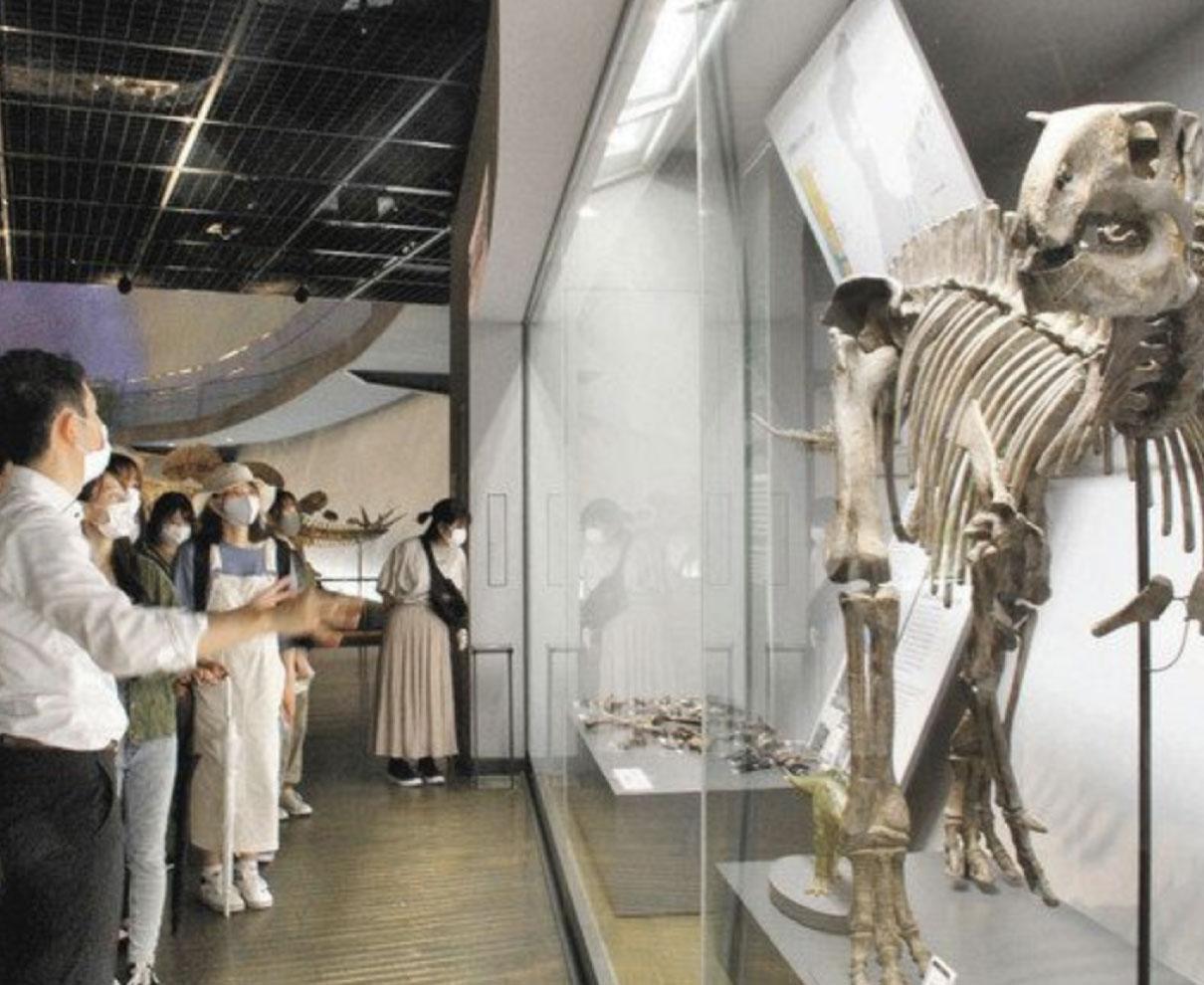 恐竜王国で研究 面白い! 県外出身の県立大生ら