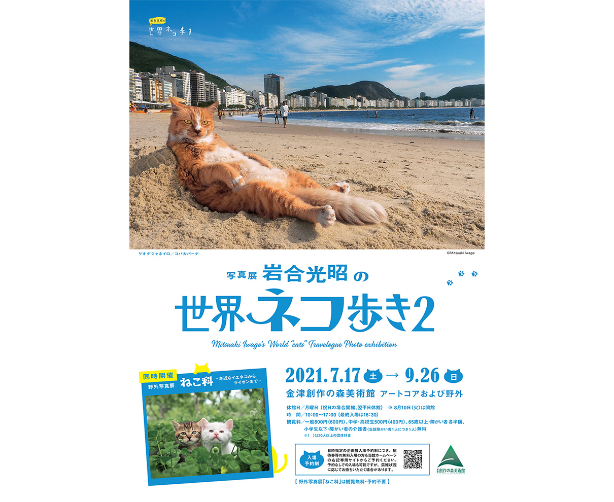 【7/17~9/26】「岩合光昭の世界ネコ歩き2」開催! 個性あふれるネコたちを見に行こう。