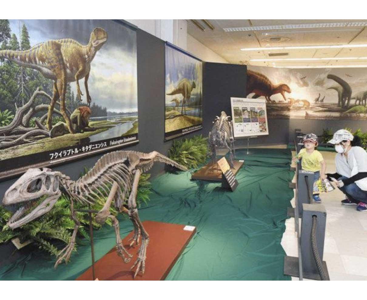 店内 恐竜いっぱい 西武福井店